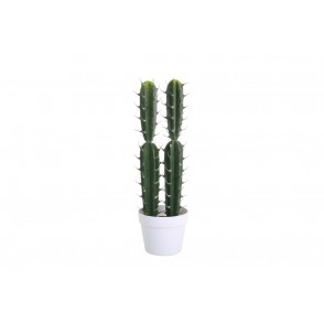 FA1011 - COMPOSITION 2 CACTUS POT BLANC 54CM - HEVEA